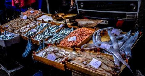 5 Alasan Kenapa Anda Harus Makan Ikan